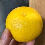 カボスのような大きさで手で剥いて食べれる雑柑。名前は黄金柑